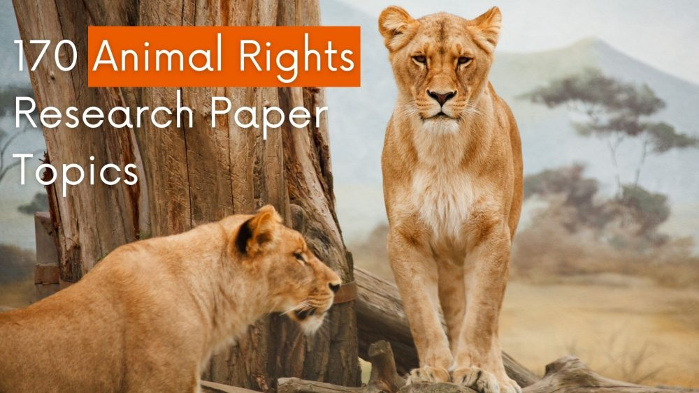 animal rights research paper topics